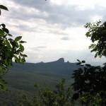 Железноводск лес