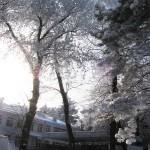 Детсад Железноводск зимой