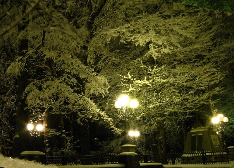 Деревья в снегу Железноводск
