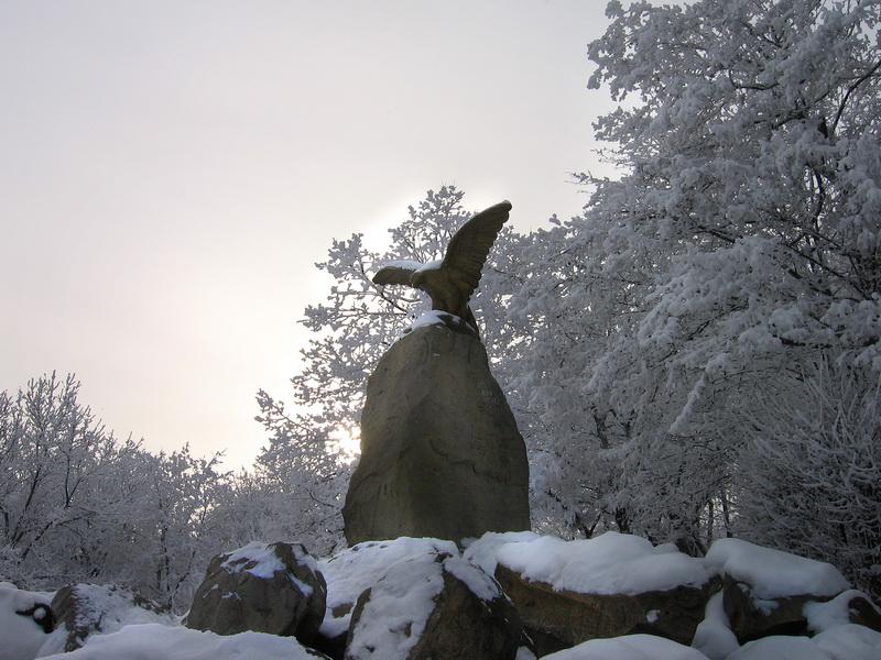 Орел в Лечебном парке
