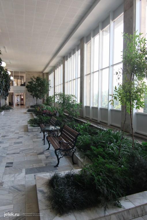 Зимний сад санатория Горный воздух фото